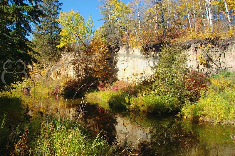 Whitemud Creek, Fall 2005