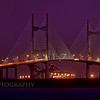 """Dames Point Bridge Magenta"""