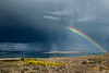 Fall Rainbow over Mono Lake