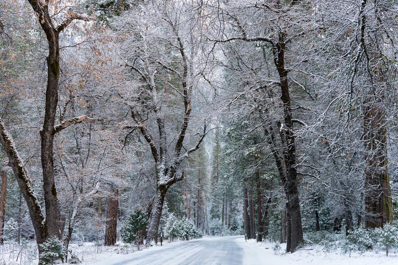 Yosemite Valley, winter roads