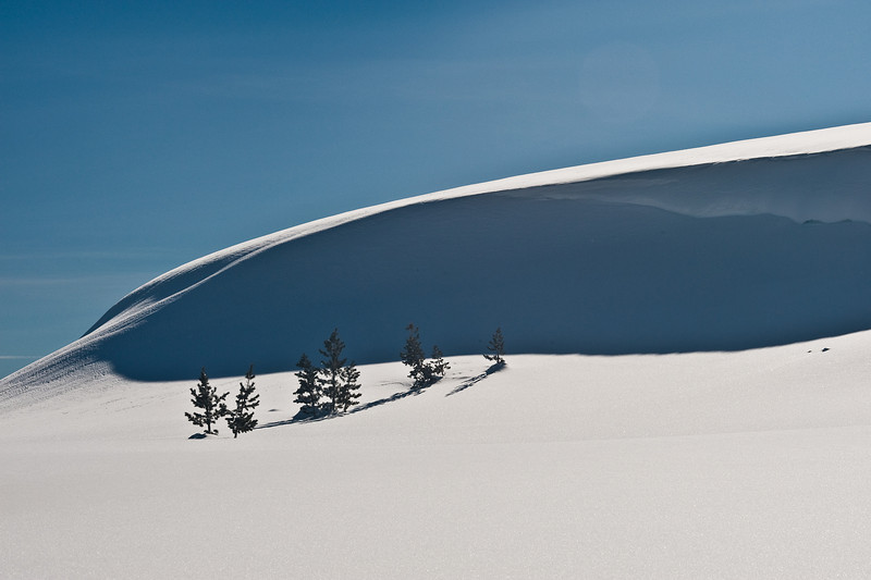 Cornice and trees, Donner summit
