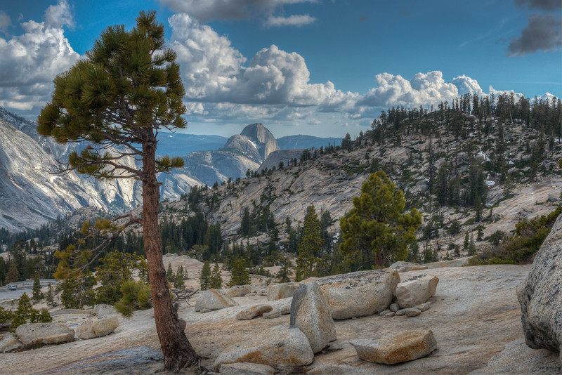 Half Dome from Olmsted Point, Yosemite