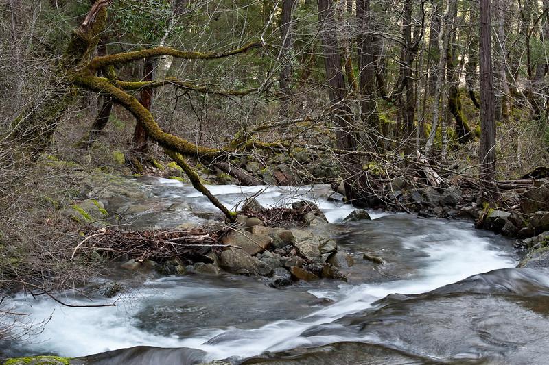 Creek, North Yuba Trail