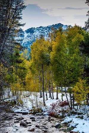 Sierra Buttes, N. Fork Yuba, fall foliage