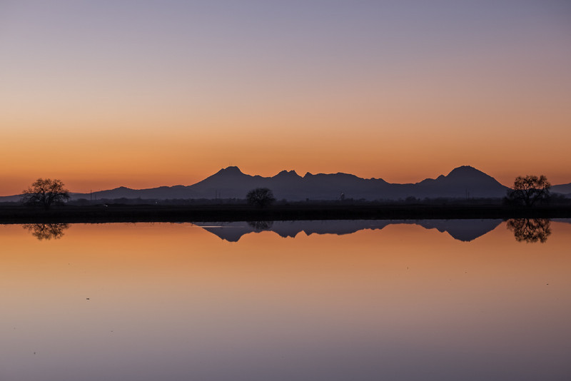 Sutter Buttes reflection