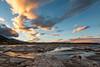 Gulls and sunset, Mono Lake
