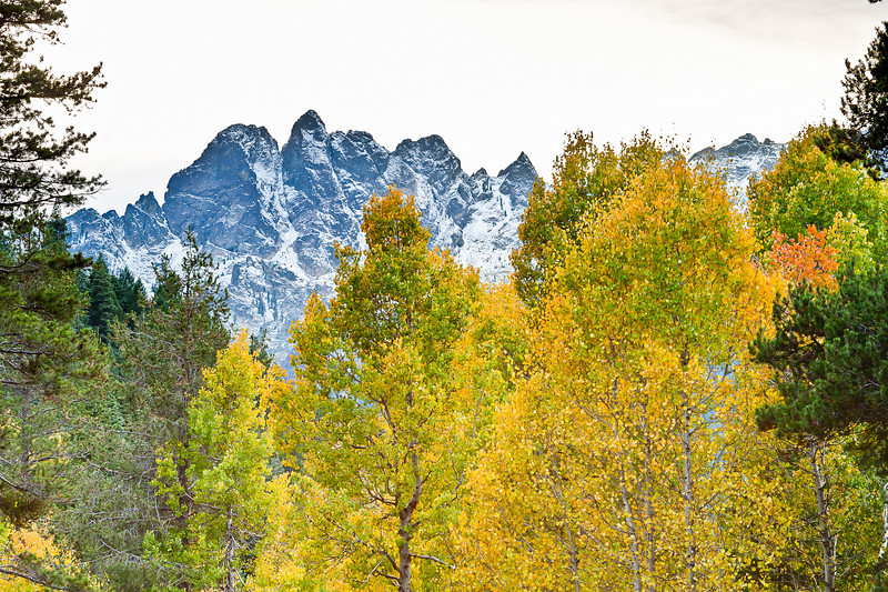 Fall foliage and Sierra Buttes