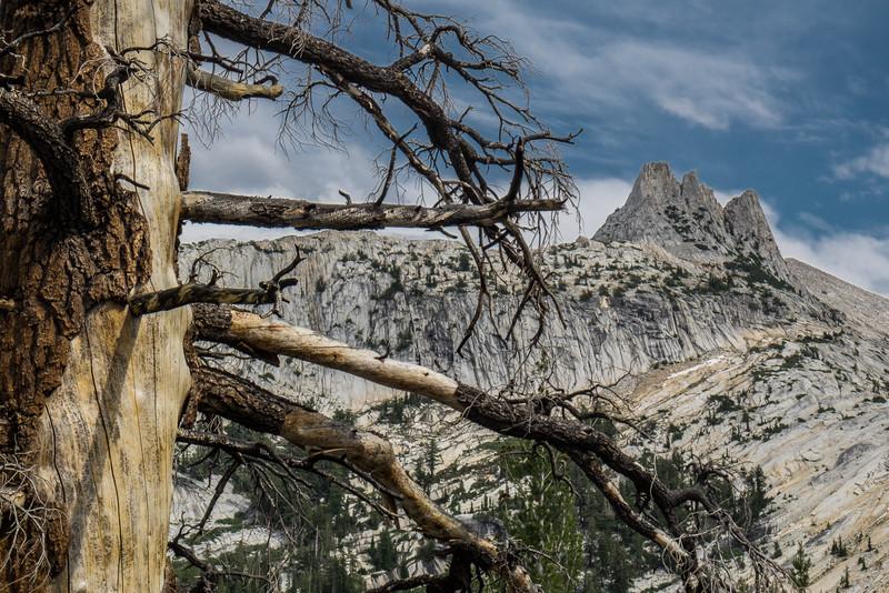 Cockscomb, Yosemite National Park