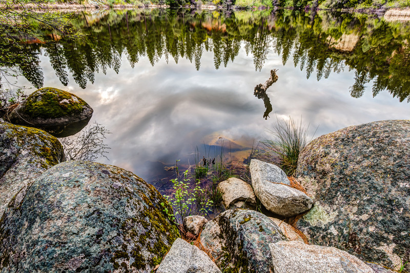 Reflections in Hirshman's Pond, Nevada CIty