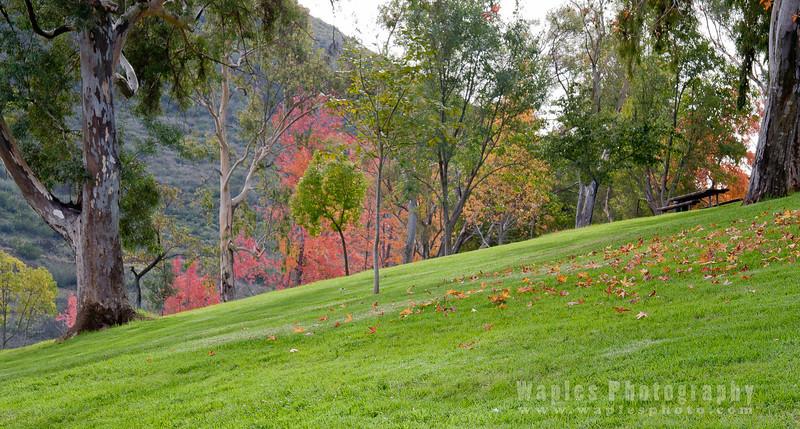 Grassy Hill, Lake Poway