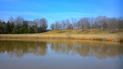From around my farm during my jog. View from back side of the pond.  I scared the ducks away right before I got there.