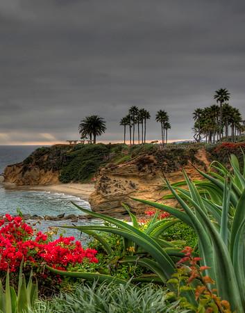 Laguna Beach Montage