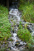 Stream from Artesian Well, Stephenson County, Illinois