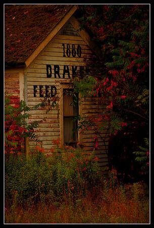 Drake Feed Location: Edinboro, Pa