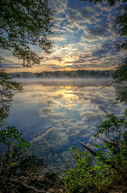 Fog at Dawn #3 - Ashland State Park