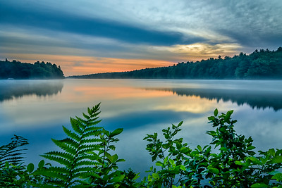 Light Fog on the Water Dawn