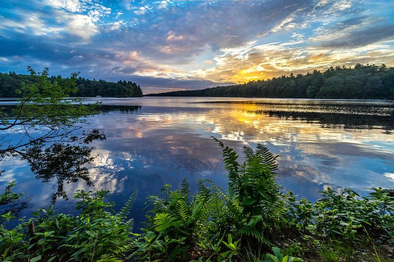 Golden Light at Dawn - Ashland State Park - Tom Sloan