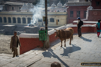 Funeral pyre at Pashupatinath temple