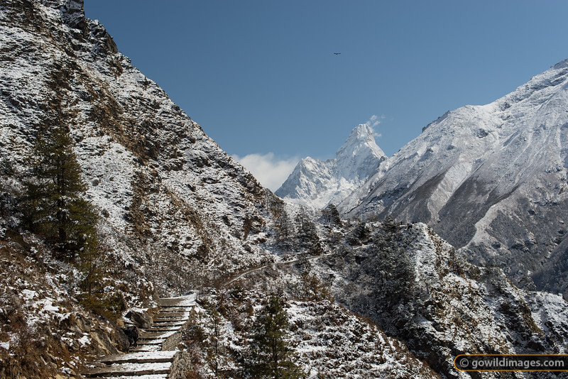 Eagle soars above Ama Dablam as two locals walk on to Tengboche