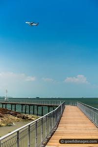 Singapore Air, water and land... Chek Jawa Wetlands walkway