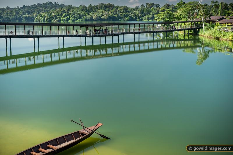Public walkway, Seletar Reservoir, River Safari