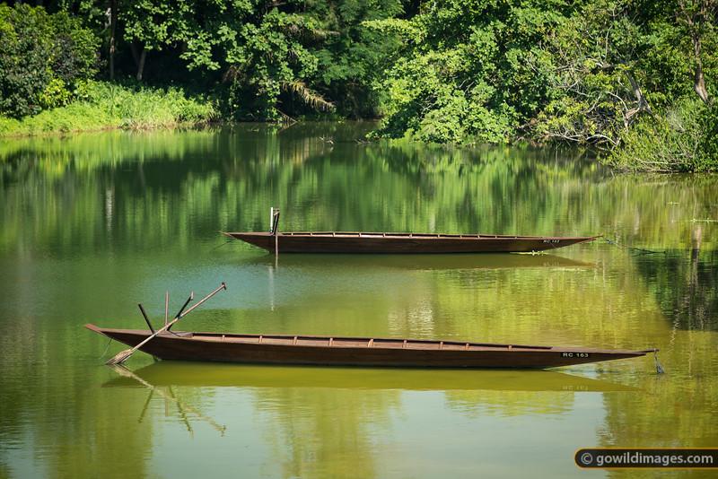Canoes, Seletar Reservoir, River Safari