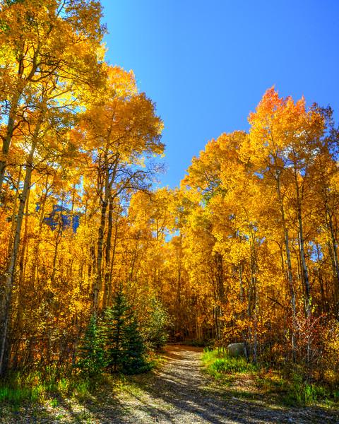 Denver and Aspen Mountain Passes (17 of 27)