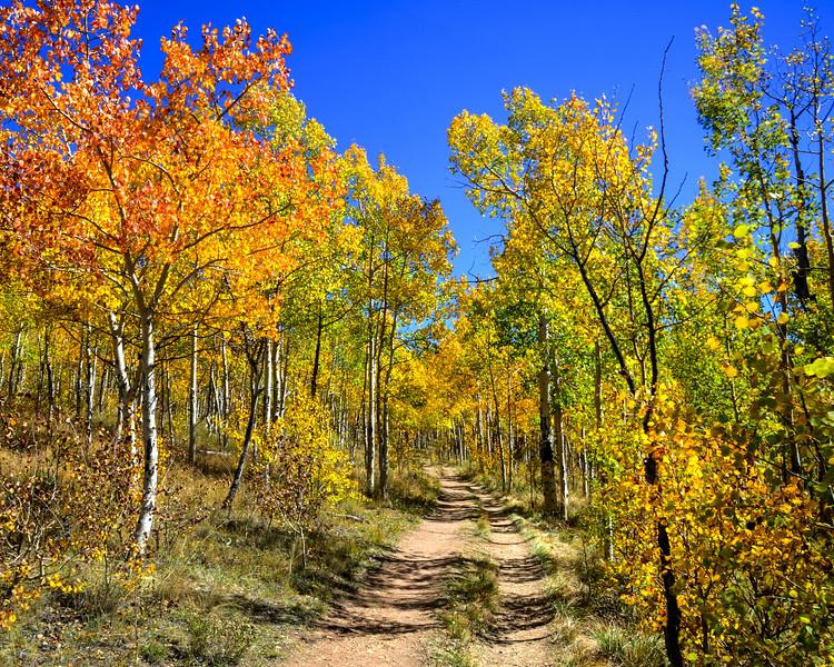 Denver and Aspen Mountain Passes (10 of 27)