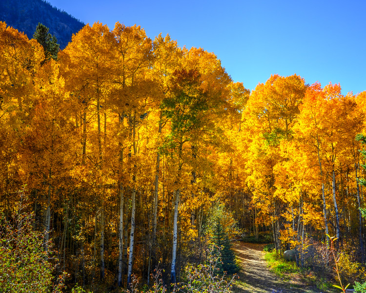 Denver and Aspen Mountain Passes (16 of 27)