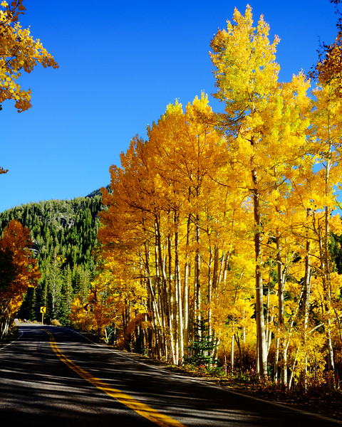 Denver and Aspen Mountain Passes (23 of 27)