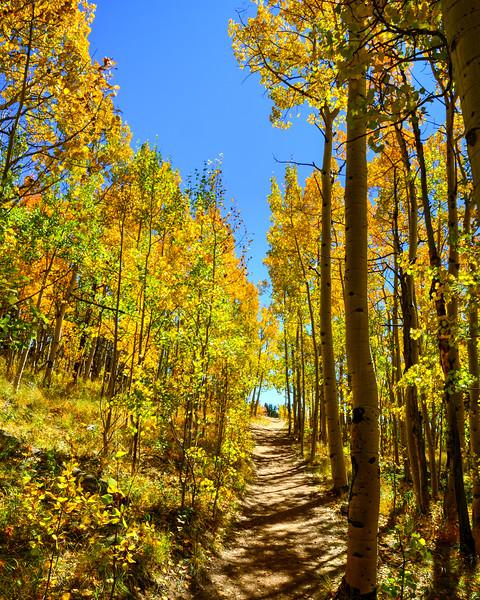 Denver and Aspen Mountain Passes (8 of 27)
