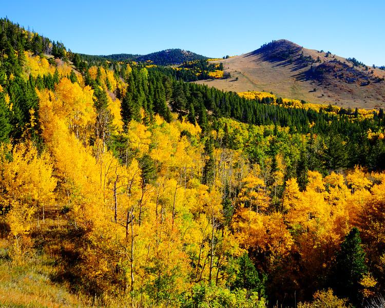 Denver and Aspen Mountain Passes (2 of 27)
