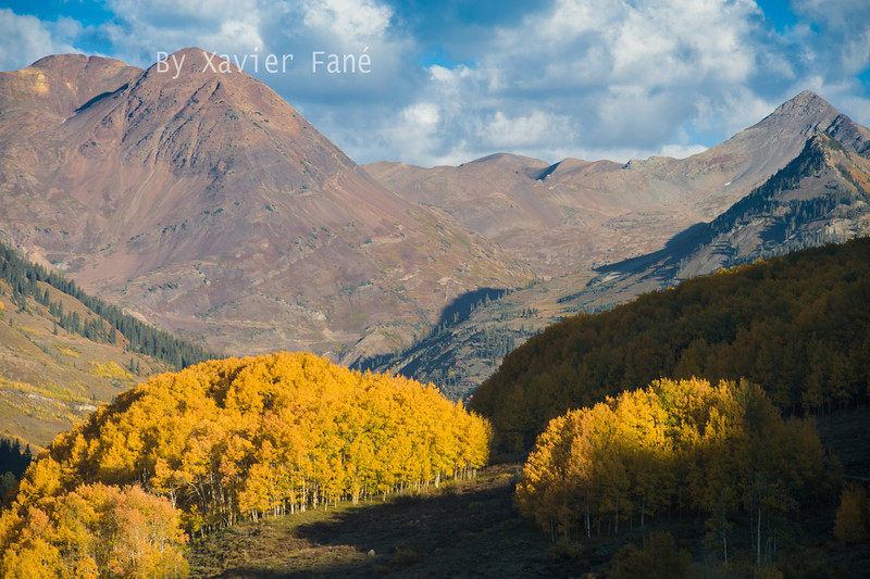 Paradise Divide, fall