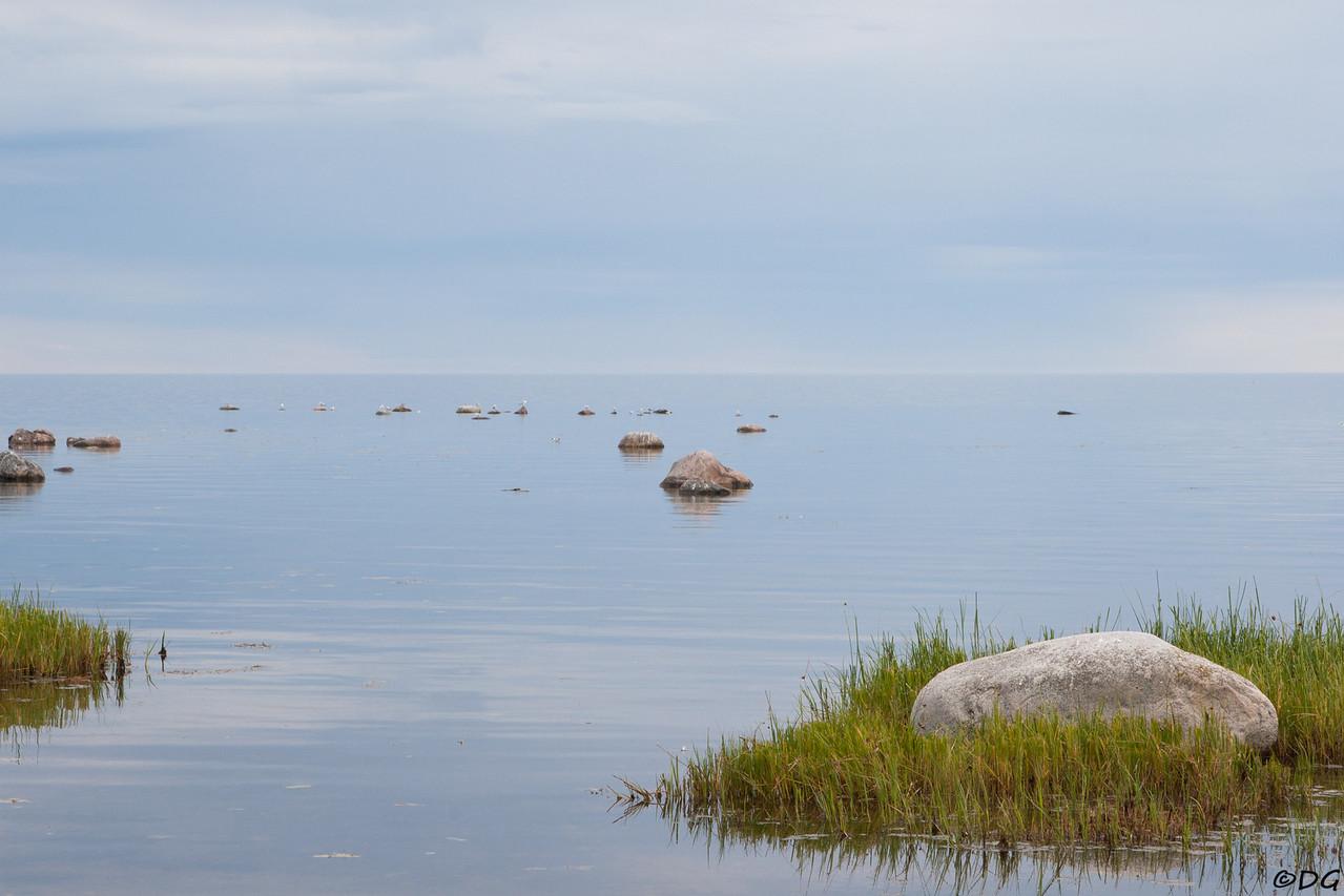 Sweden, Gotland, Fide
