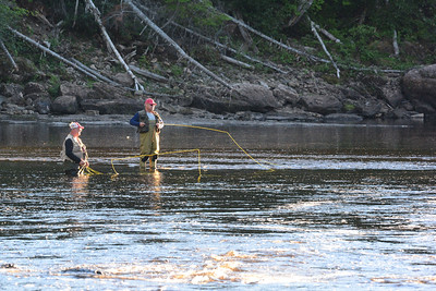 Salmon fishing on the Humber River