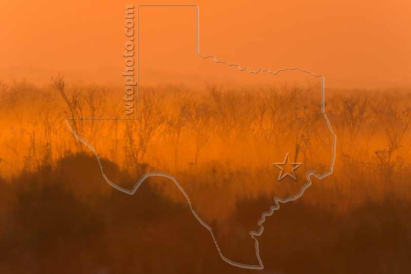 Sunrise Fog,<br /> Brazoria National Wildlife Refuge, Texas