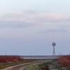 Morning light, Attwater Prairie Chicken National Wildlife Refuge, April 13, 2013