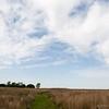 Attwater Prairie Chicken National Wildlife Refuge, April 13, 2013
