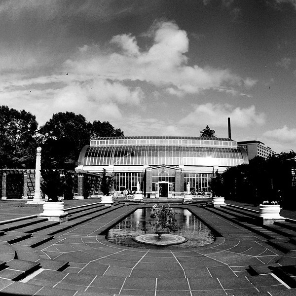 Winter Gardens, Auckland Domain.