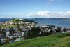 North Head from Mt. Victoria, North Shore, Auckland.