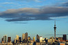 Auckland Afternoon