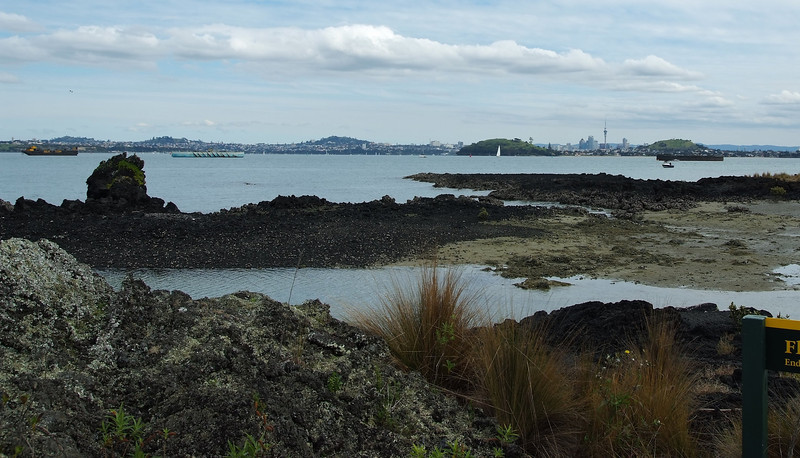 Auckland Volcanic Cones: One Tree Hill, Mt. Hobson, Mt. Eden, North Head, and Mt. Victoria. Taken from the base of the biggest and most recent, Rangitoto.