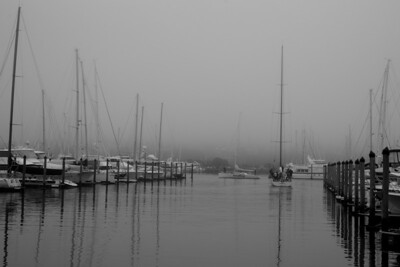 Westhaven in the fog