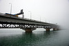 Auckland Harbour Bridge in the fog 2