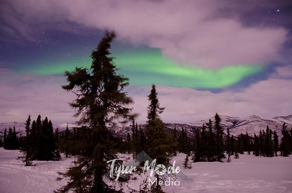 Aurora 3.11-3.12.14