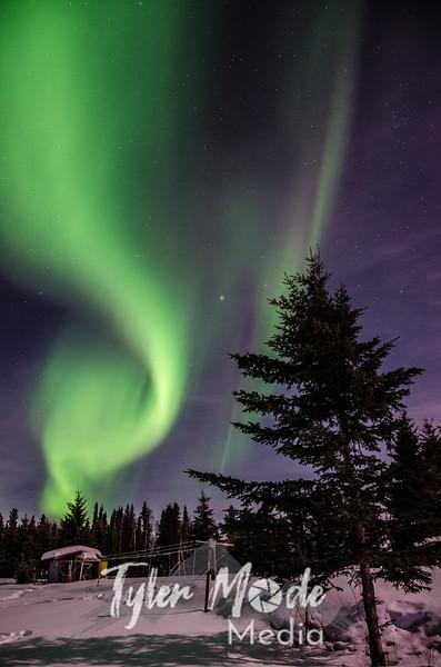 Aurora 3.12-3.13.14