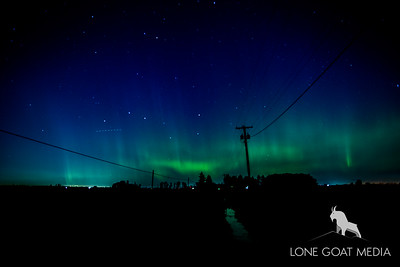 North Lynden Northern Lights