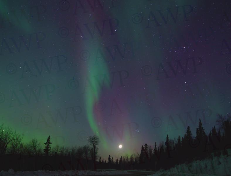 Alaskan Skies