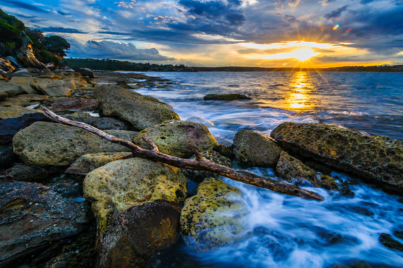 """Royal National Park in Australia at Sunset"" near Sydney Australia, New South Wales"