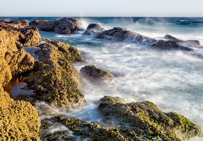 The Wild Blue Sea